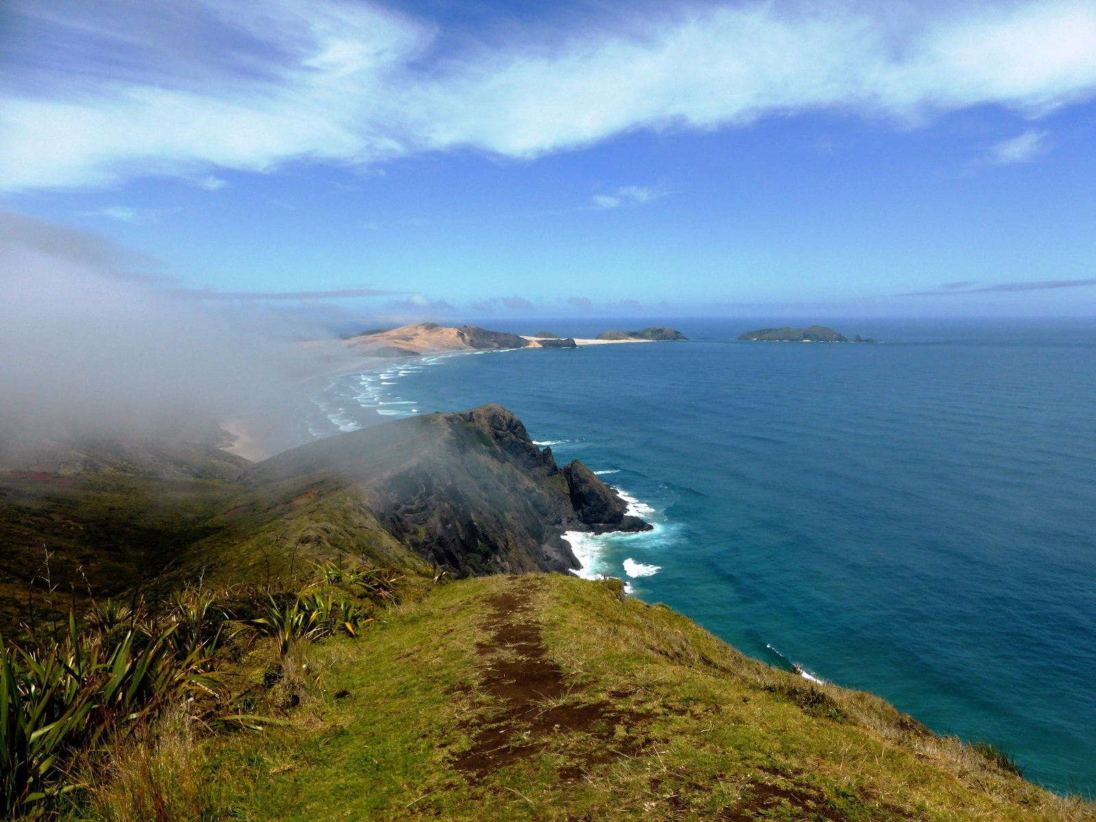 Nos coups de cœur dans l'île du Nord de Nouvelle Zélande