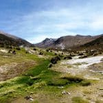 Geysers parc de Sajama-Bolivie